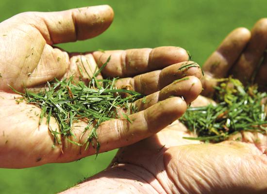Rasenmäher | AL-KO MaxAirflow Technology nie mehr grüne Finger beim Rasenmähen